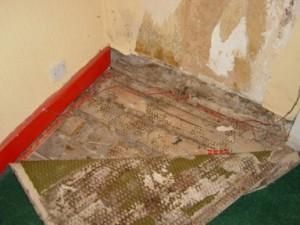 Umidità nelle pareti Torino
